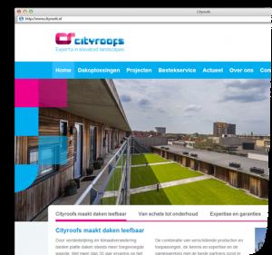 cityroofs_corporate_website