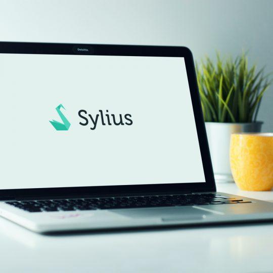 Sylius: wat is het en wanneer zet je het in?