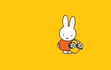 Website nijntje.nl biedt kinderen urenlang speelplezier
